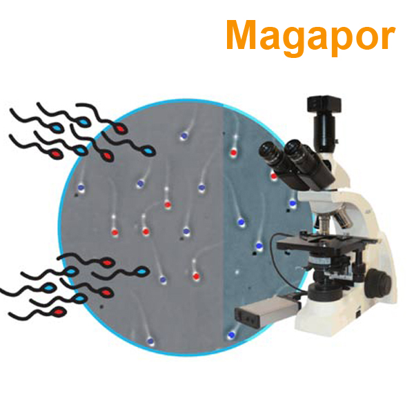 西班牙Magapor全自动精子质量分析系统