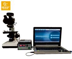 【猪仙子】猪精液质量自动分析系统ZXZ-1001